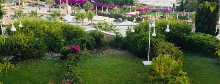 Sianji Resort, Muu Wellnes&Spa Center is one of สถานที่ที่ 1sen ถูกใจ.
