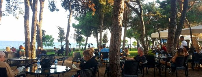 Fenerbahçe Orduevi Piknik Cafe is one of Posti che sono piaciuti a Korhan.