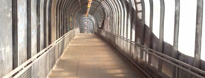 Пешеходный мост через МКАД из экологически чистого дерева is one of Orte, die Jano gefallen.