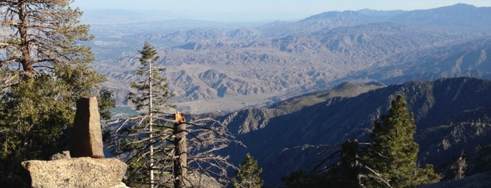 Mount San Jacinto State Park is one of places to return (numero quattro).