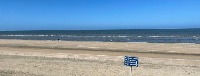 Strand holland zeeland fkk Holiday in