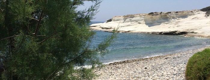 Agios Georgios Alamanou Fish Tavern is one of Cyprus.