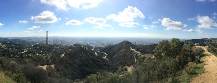 Peak of Runyon Canyon is one of Los Angeles.