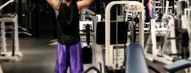 24 Hour Fitness is one of สถานที่ที่ Vu ถูกใจ.