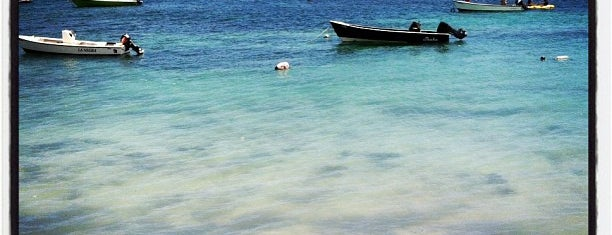 Abe's Snorkeling and Biobay Tours is one of Tempat yang Disukai h.