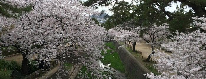 苦楽園口橋 is one of Lugares favoritos de 高井.