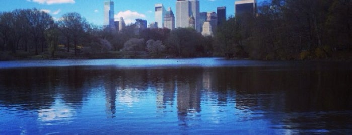 Central Park - Hernshead is one of one of these days: NYC.