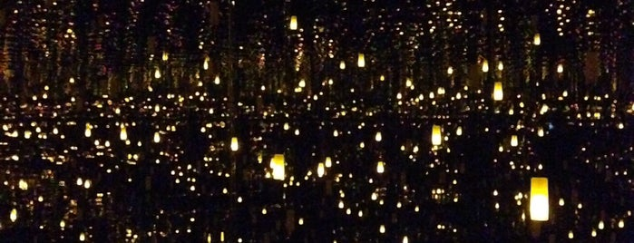 Yayoi Kusama Infinity Mirrors is one of Seattle.