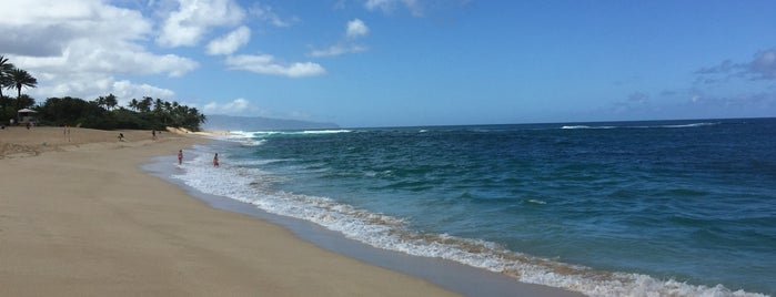Ehukai Beach Park is one of chawaii.