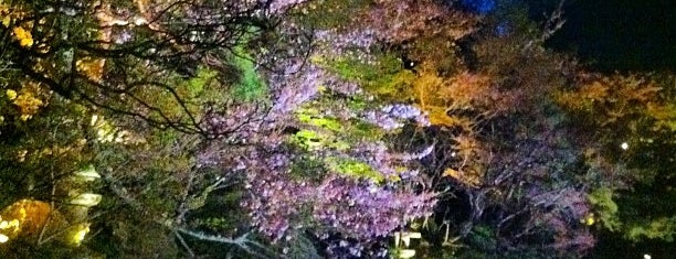 Kiyomizu-dera Temple is one of KIX.