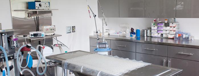 Hôpital Vétérinaire Journet is one of Posti salvati di Kalin.