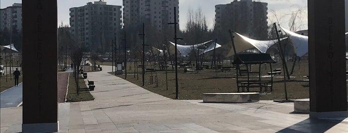Zafer Parkı Yürüyüş Yolu is one of Locais curtidos por Semin.