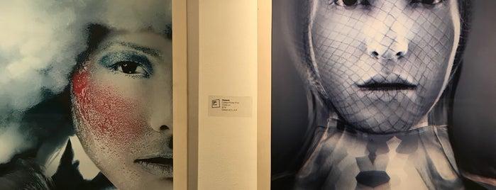 Shirin Art Gallery | گالری شیرین is one of Tehran 1397.