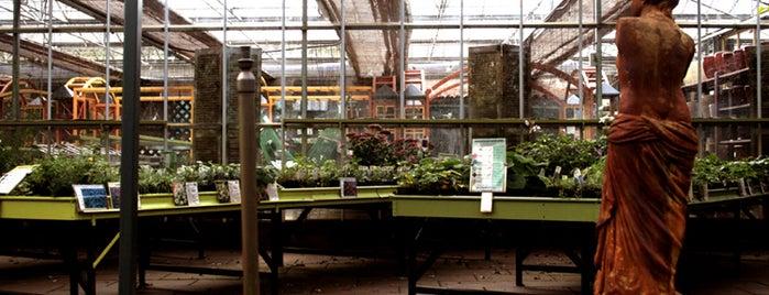 Tuincentrum De Heide Bergen op Zoom is one of Lugares favoritos de Yuri.
