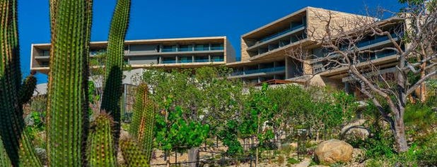 Solaz, a Luxury Collection Resort, Los Cabos is one of Cabo.