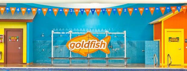 Goldfish Swim School - Needham is one of Sanjeev : понравившиеся места.