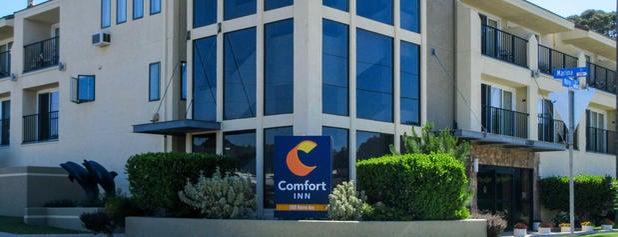 Comfort Inn is one of Vera'nın Beğendiği Mekanlar.
