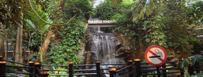 KLIA Jungle Boardwalk is one of Creigさんのお気に入りスポット.