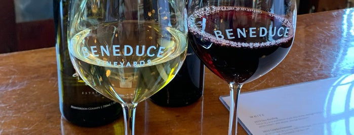 Beneduce Vineyards is one of Mikeさんの保存済みスポット.