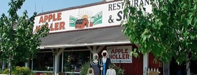 Apple Holler is one of The Best Apple-Picking Orchards in America.