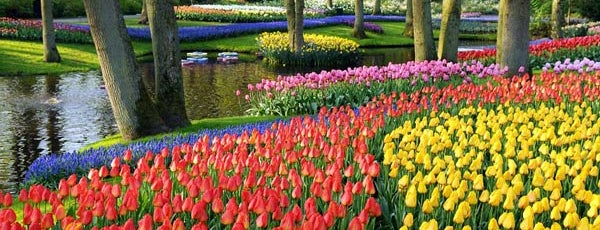 Keukenhof is one of Nederland.