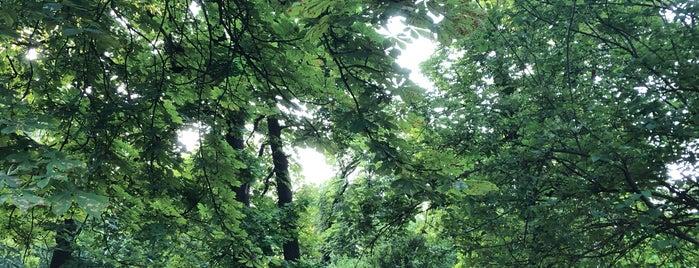 """Парк """"Високий Замок"""" is one of Orte, die Lesia gefallen."""