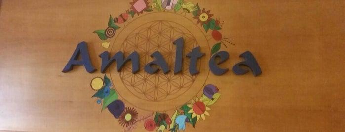 Amaltea is one of Para Veganos en Barcelona.