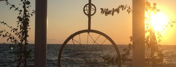 Solid Beach is one of Bodrum Deniz.