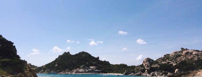 Parco Nazionale dell'Arcipelago di La Maddalena is one of LT's ROE.