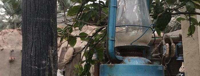 مصنع الفخار بالاحساء is one of Posti che sono piaciuti a Fatema.