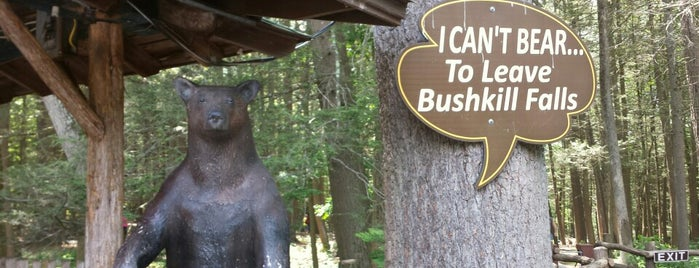 Bushkill Falls is one of Delaware River Adventure Ideas.