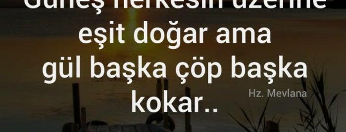 ŞEN OPTİK CADDE is one of Barış ☀️ 님이 좋아한 장소.