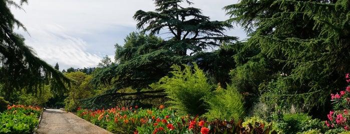 Никитский ботанический сад is one of Крым.