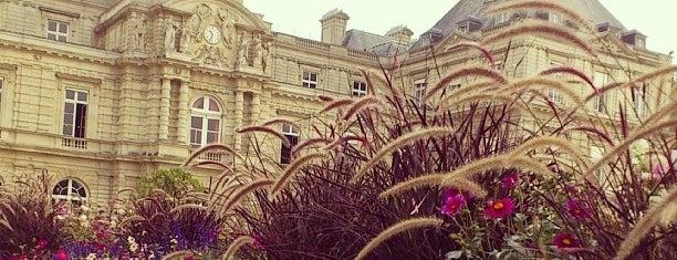 Jardin du Luxembourg is one of My Paris.