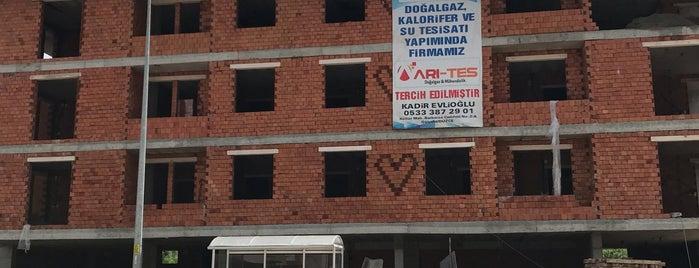 Aziziye is one of CWOmerB.