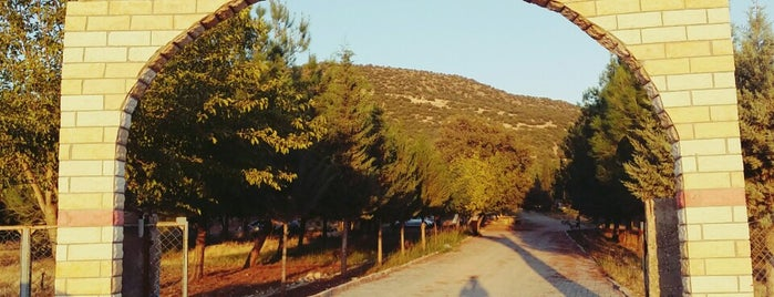 cimikan dore bayre is one of Lugares favoritos de Ekrem.