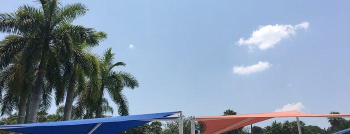 Six Flags Splash Island is one of Lugares favoritos de Jose.