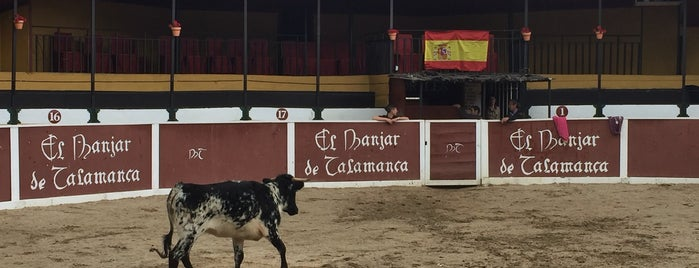 El Manjar De Talamanca is one of Madrid.