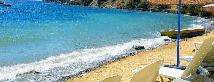 Ilgın Beach is one of Lugares guardados de Hakan.