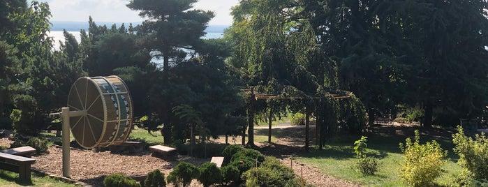 Folly Arborétum is one of Kékkút.
