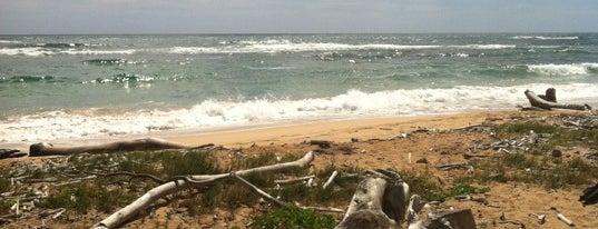 Beachwood Beach is one of Places to Visit: Kauai, HI.