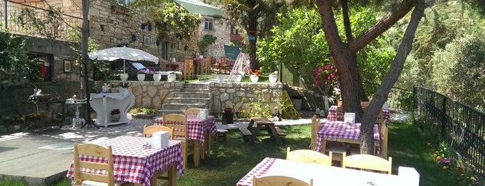 kozbeyli ağaçlı ev is one of Posti salvati di Fikret.