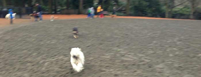 Robinswood Dog Park - West is one of Dog Parks.