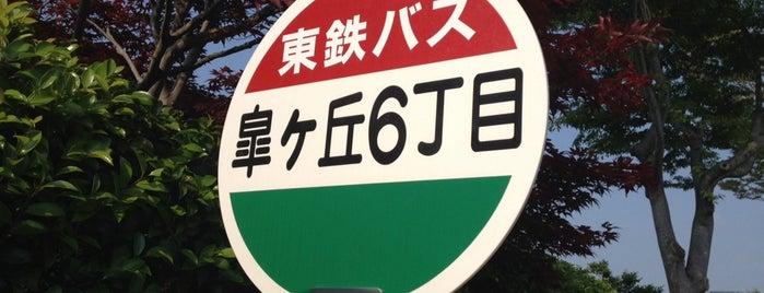 皐ヶ丘六丁目 is one of 東鉄バス 名鉄緑台線.