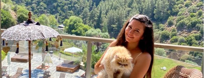 Asma Bahçeler is one of Türkiye Mimarlık Yıllığı 2012.