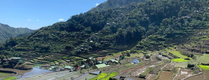 Batad Rice Terraces is one of Kat's Liked Places.