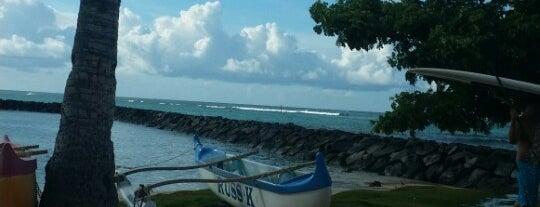 Bowls Surf Break is one of Lieux qui ont plu à Nora.