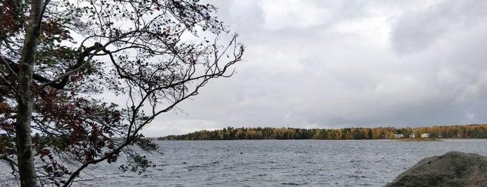 Särkiniemen puisto is one of Helsinki.