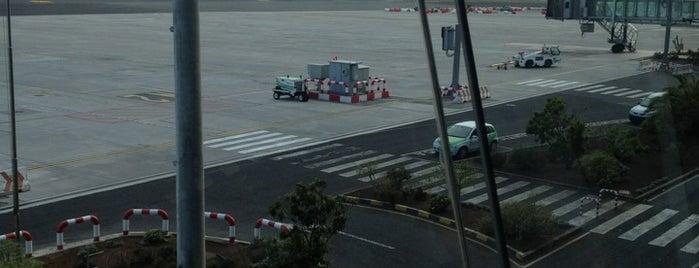 Aeropuerto de Tenerife Norte (TFN) is one of Airports (around the world).