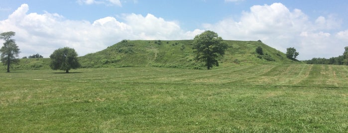 Cahokia Mounds State Historic Site is one of People, Places, and Things.